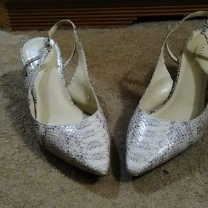 Talbot's Heels